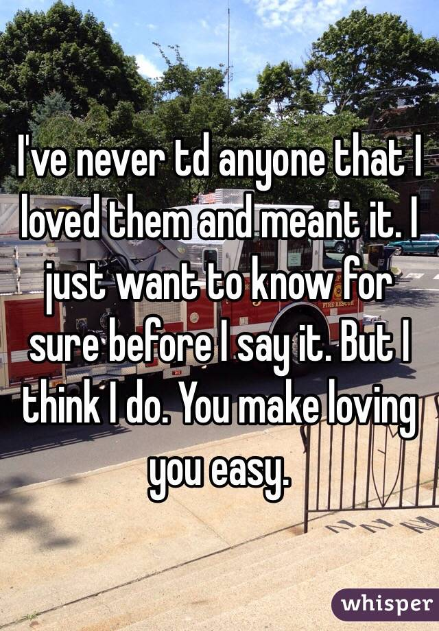 I've never td anyone that I loved them and meant it. I just want to know for sure before I say it. But I think I do. You make loving you easy.
