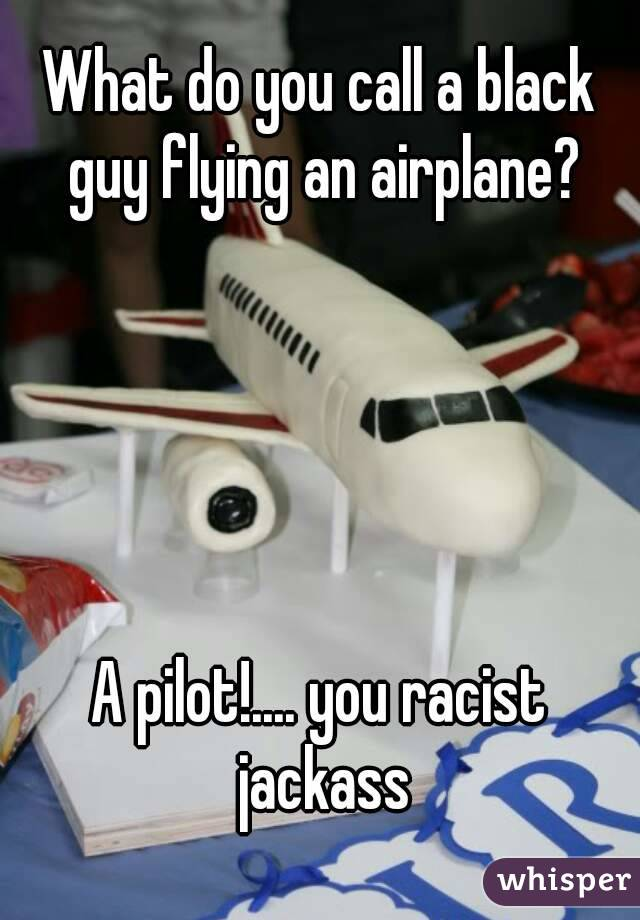 What do you call a black guy flying an airplane?      A pilot!.... you racist jackass