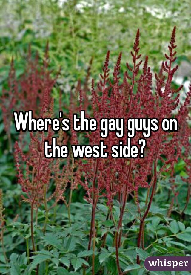 Where's the gay guys on the west side?