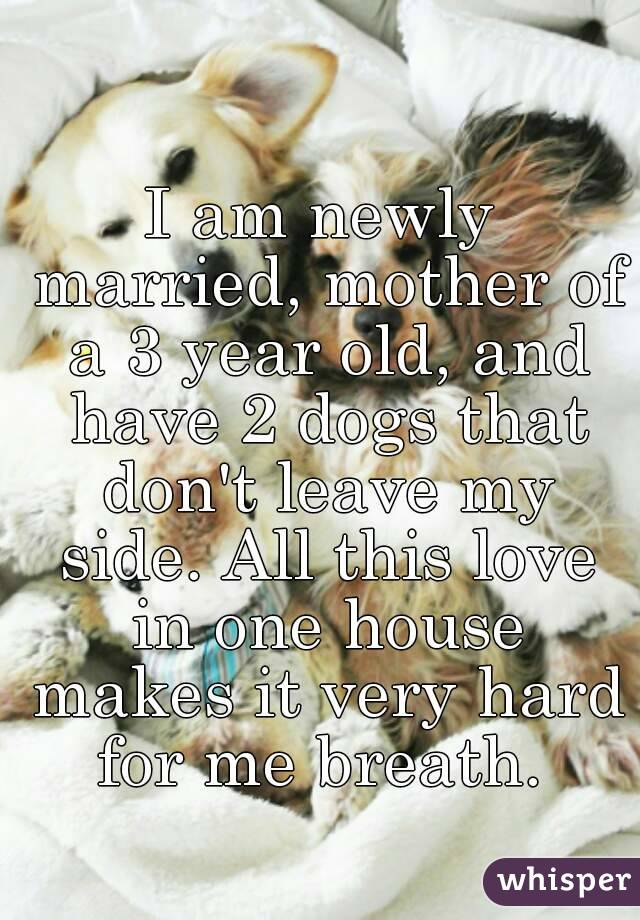 I am newly married, mother of a 3 year old, and have 2 dogs that don't leave my side. All this love in one house makes it very hard for me breath.