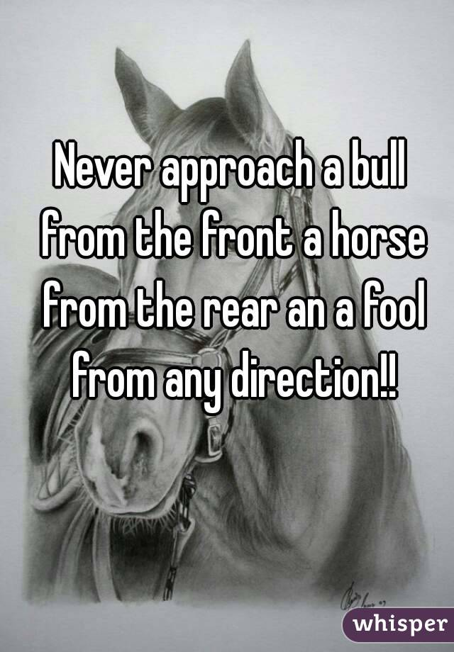 Never approach a bull from the front a horse from the rear an a fool from any direction!!