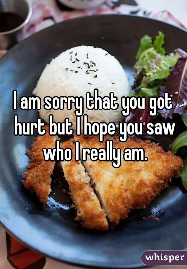 I am sorry that you got hurt but I hope you saw who I really am.