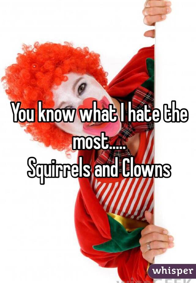 You know what I hate the most.....  Squirrels and Clowns