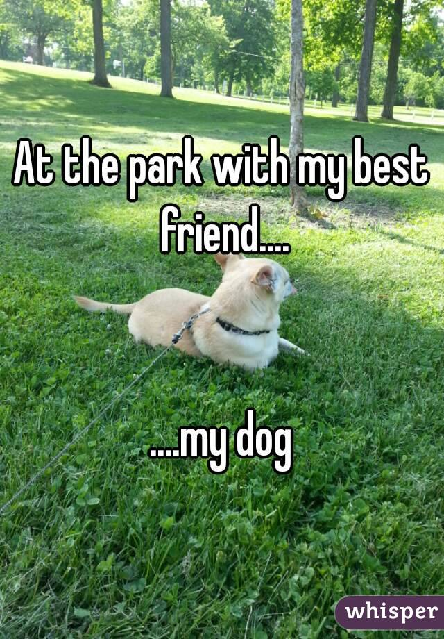 At the park with my best friend....   ....my dog
