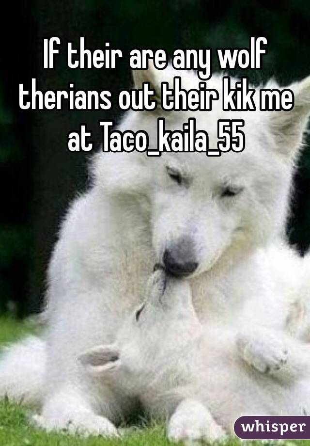 If their are any wolf therians out their kik me at Taco_kaila_55