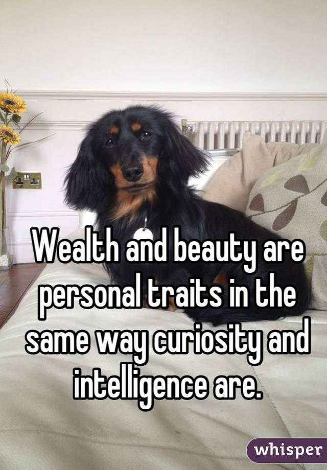 Wealth and beauty are personal traits in the same way curiosity and intelligence are.