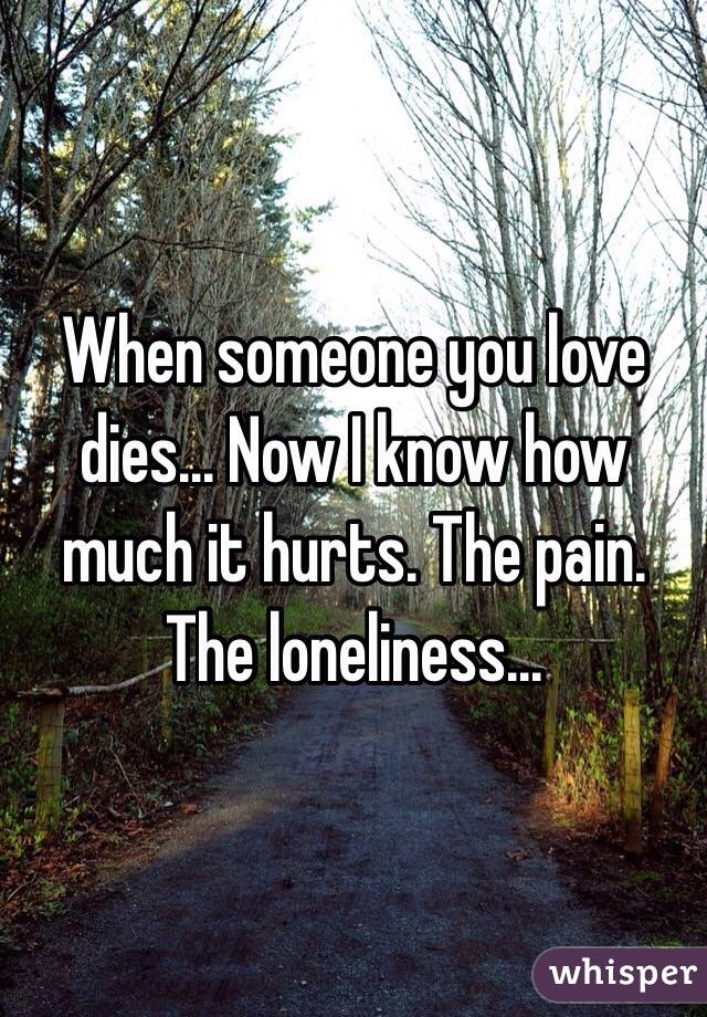 When someone you love dies... Now I know how much it hurts. The pain. The loneliness...