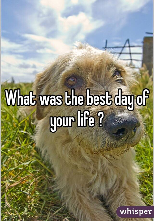 What was the best day of your life ?
