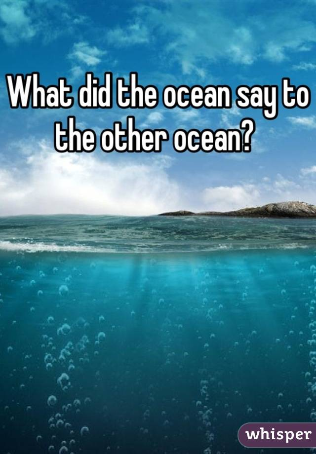 What did the ocean say to the other ocean?