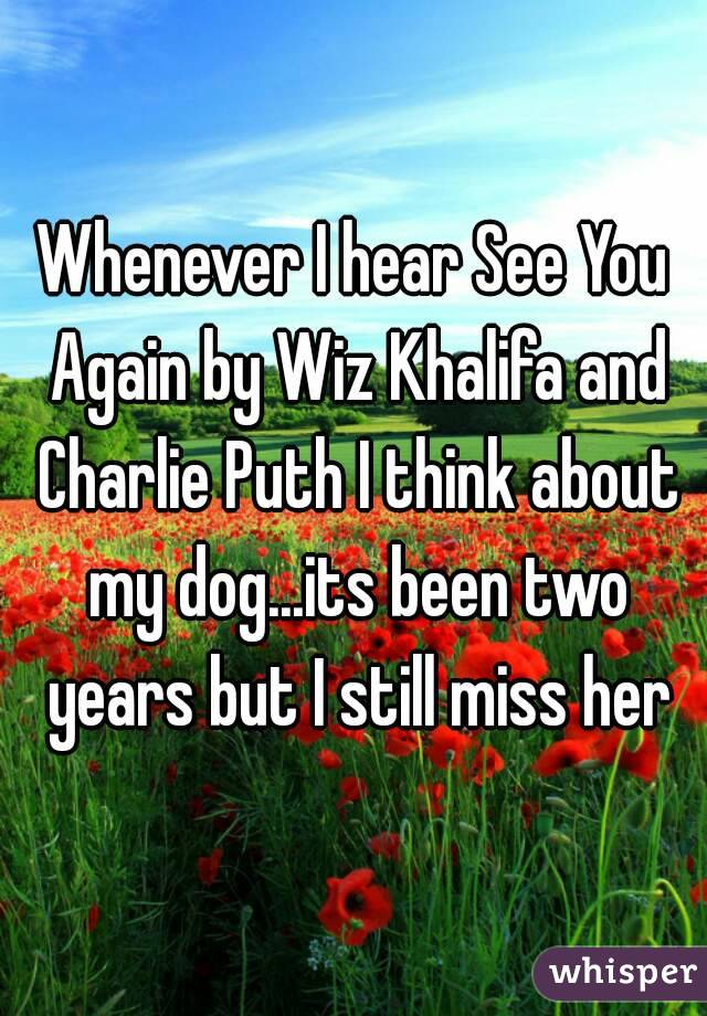 Whenever I hear See You Again by Wiz Khalifa and Charlie Puth I think about my dog...its been two years but I still miss her