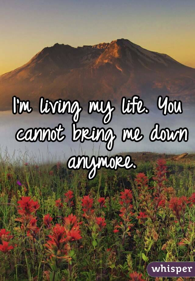 I'm living my life. You cannot bring me down anymore.