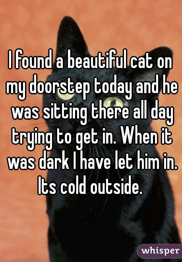 I found a beautiful cat on my doorstep today and he was sitting there all day trying to get in. When it was dark I have let him in. Its cold outside.