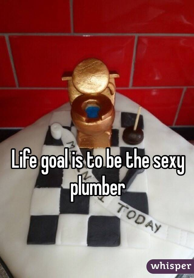 Life goal is to be the sexy plumber