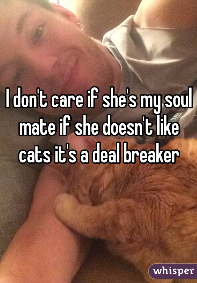 I don't care if she's my soul mate if she doesn't like cats it's a deal breaker