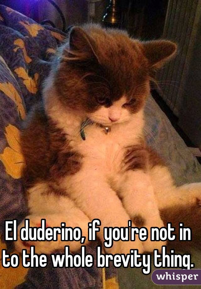 El duderino, if you're not in to the whole brevity thing.