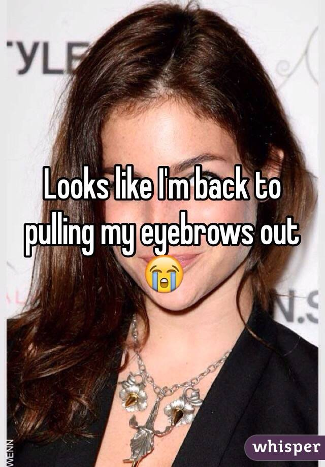 Looks like I'm back to pulling my eyebrows out 😭