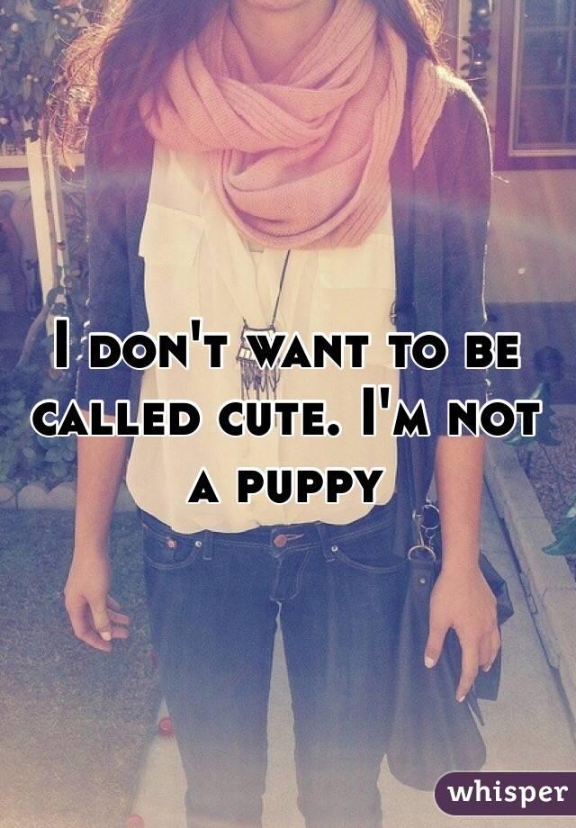 I don't want to be called cute. I'm not a puppy