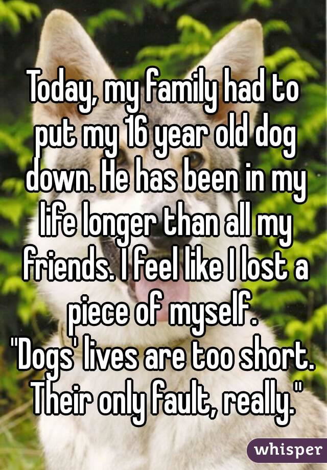 """Today, my family had to put my 16 year old dog down. He has been in my life longer than all my friends. I feel like I lost a piece of myself.  """"Dogs' lives are too short. Their only fault, really."""""""