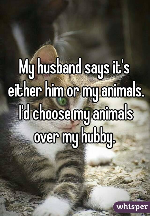 My husband says it's either him or my animals. I'd choose my animals over my hubby.