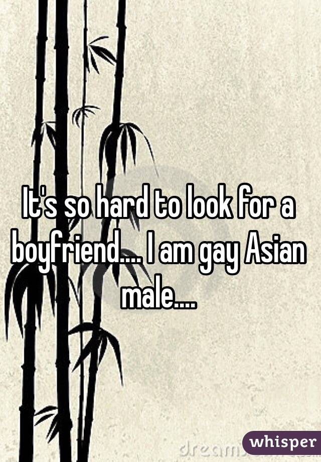 It's so hard to look for a boyfriend.... I am gay Asian male....