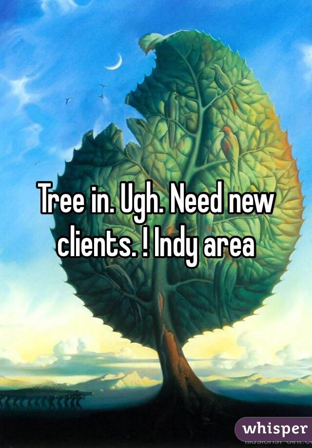 Tree in. Ugh. Need new clients. ! Indy area