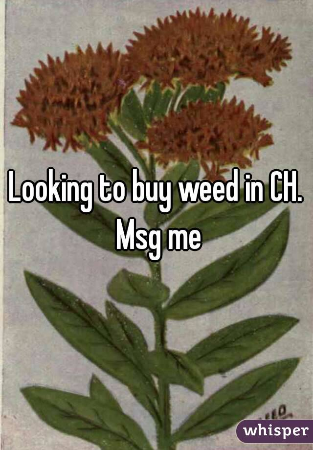 Looking to buy weed in CH. Msg me