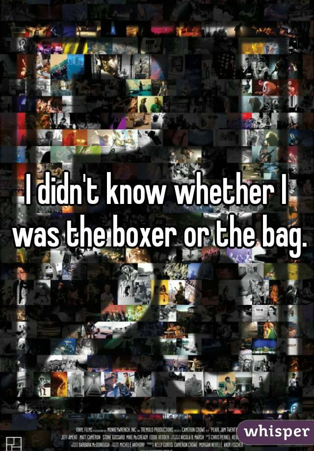 I didn't know whether I was the boxer or the bag.