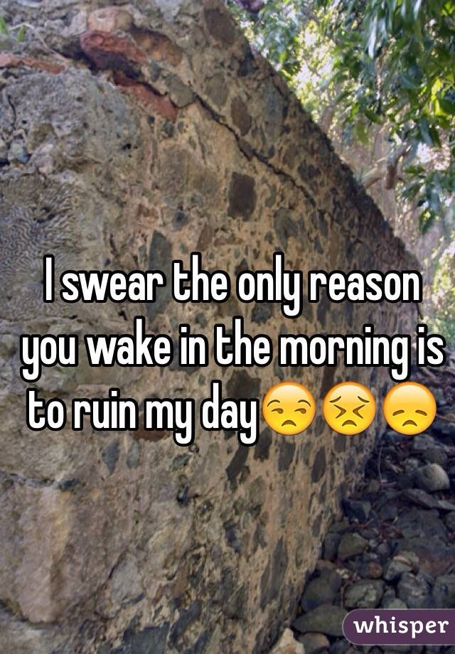 I swear the only reason you wake in the morning is to ruin my day😒😣😞