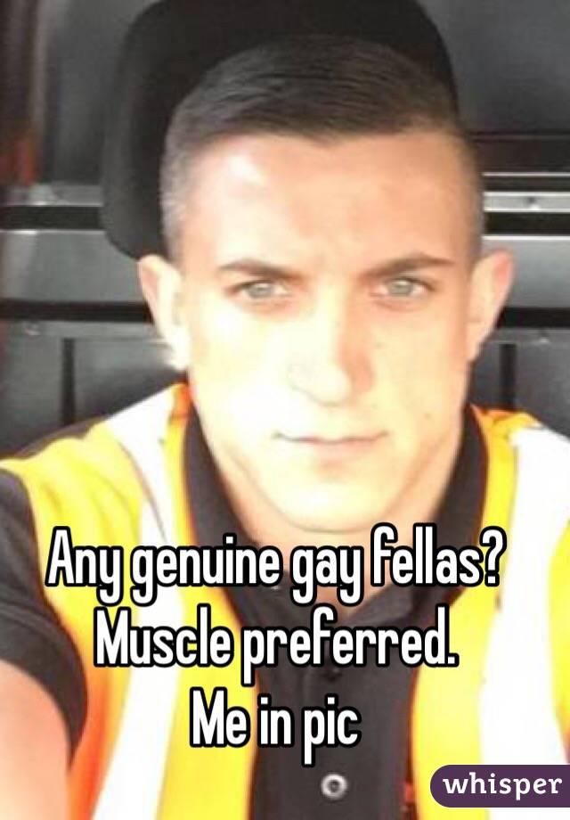 Any genuine gay fellas? Muscle preferred. Me in pic