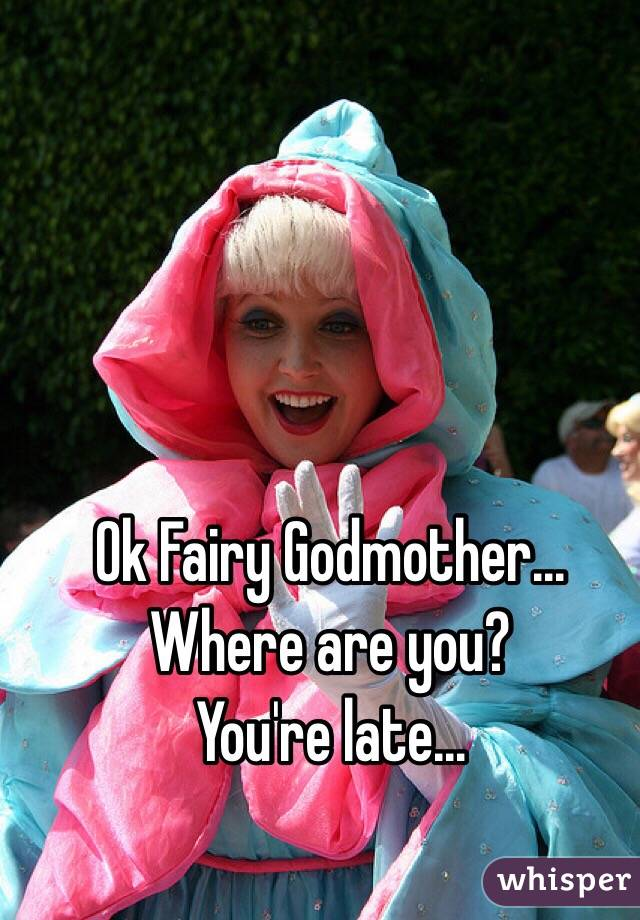 Ok Fairy Godmother...  Where are you?  You're late...