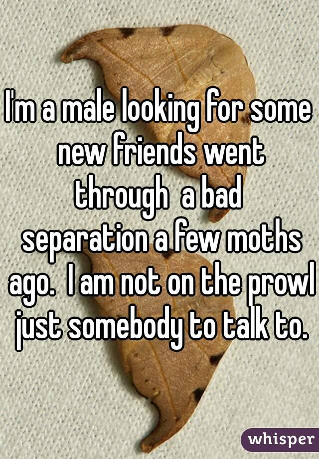 I'm a male looking for some new friends went through  a bad  separation a few moths ago.  I am not on the prowl just somebody to talk to.