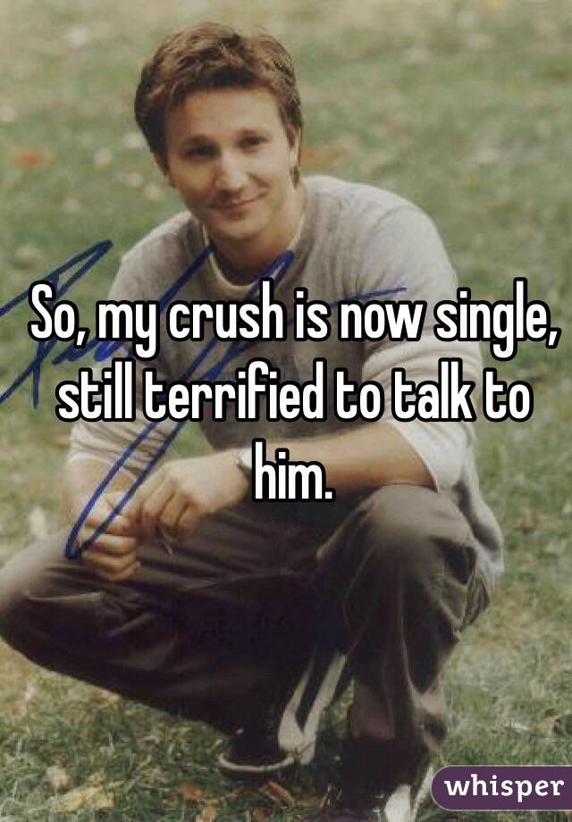 So, my crush is now single, still terrified to talk to him.