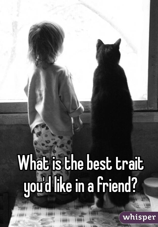 What is the best trait you'd like in a friend?