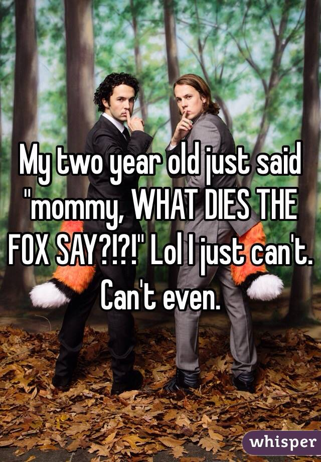 """My two year old just said """"mommy, WHAT DIES THE FOX SAY?!?!"""" Lol I just can't. Can't even."""