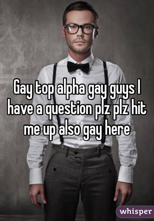 Gay top alpha gay guys I have a question plz plz hit me up also gay here