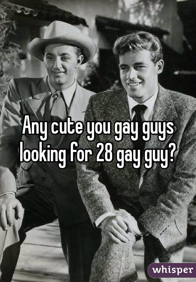 Any cute you gay guys looking for 28 gay guy?