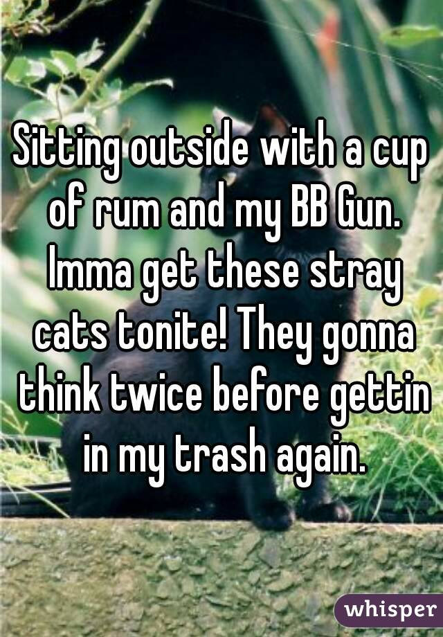 Sitting outside with a cup of rum and my BB Gun. Imma get these stray cats tonite! They gonna think twice before gettin in my trash again.
