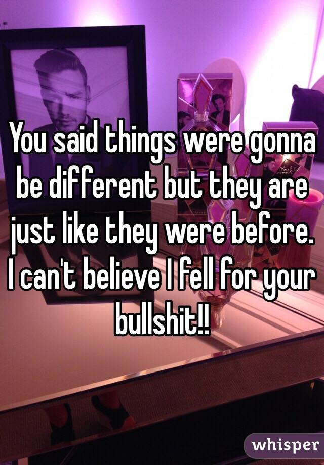 You said things were gonna be different but they are just like they were before. I can't believe I fell for your bullshit!!