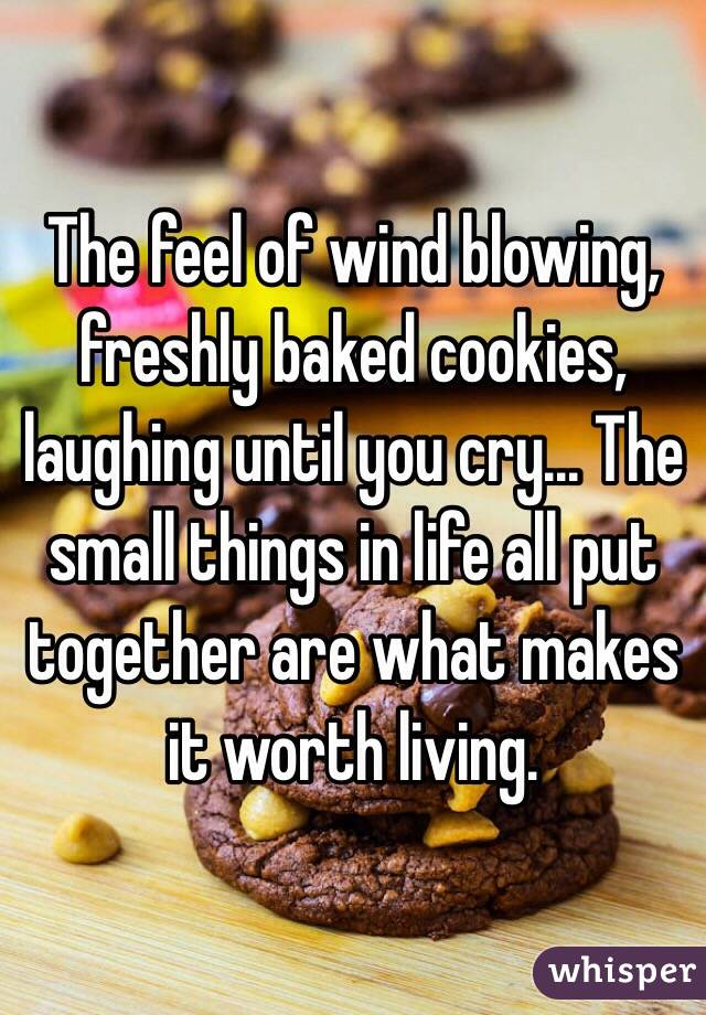 The feel of wind blowing, freshly baked cookies, laughing until you cry... The small things in life all put together are what makes it worth living.