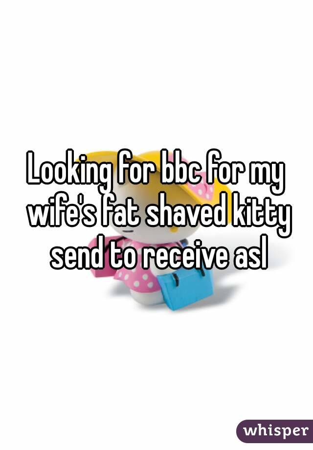 Looking for bbc for my wife's fat shaved kitty send to receive asl