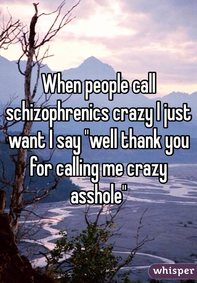 """When people call schizophrenics crazy I just want I say """"well thank you for calling me crazy asshole"""""""