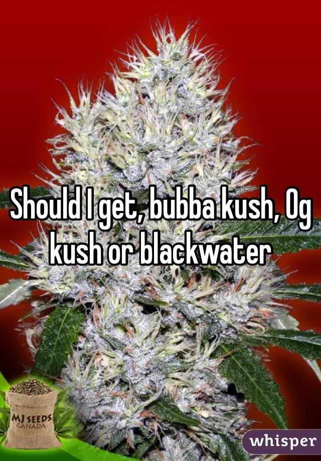 Should I get, bubba kush, Og kush or blackwater