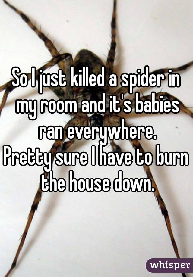 So I just killed a spider in my room and it's babies ran everywhere. Pretty sure I have to burn the house down.