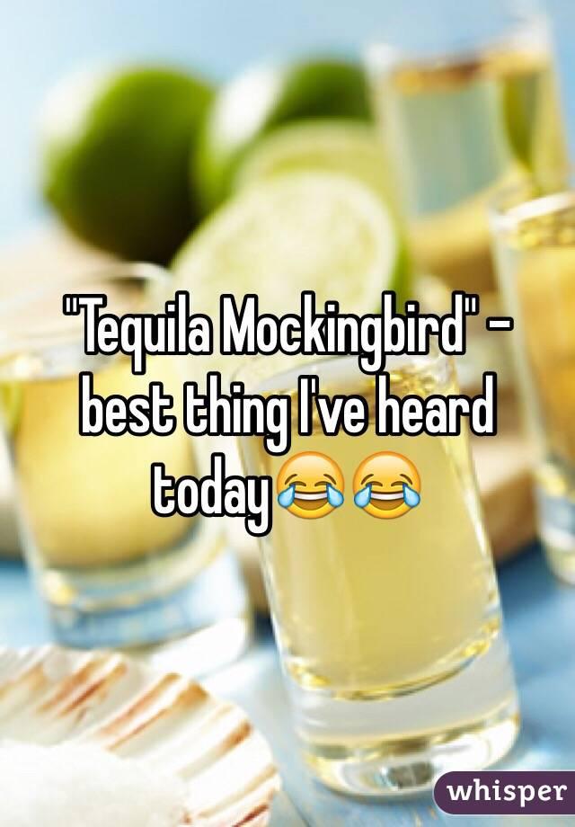 """Tequila Mockingbird"" - best thing I've heard today😂😂"