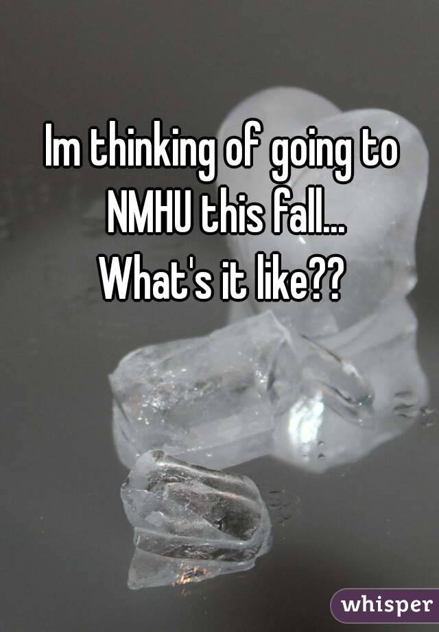 Im thinking of going to NMHU this fall... What's it like??