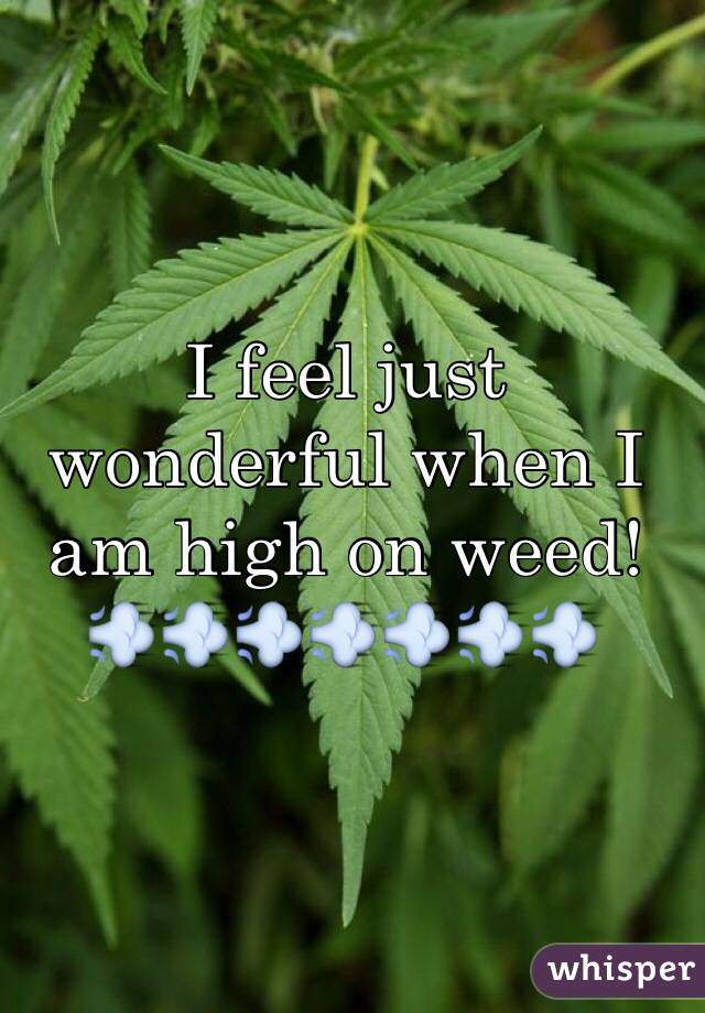 I feel just wonderful when I am high on weed! 💨💨💨💨💨💨💨