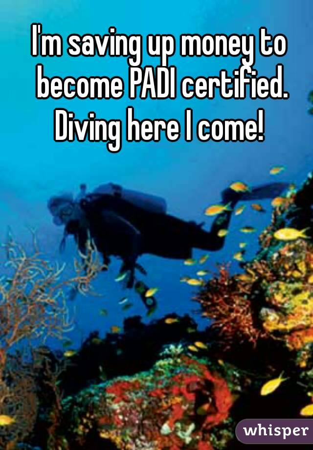 I'm saving up money to become PADI certified. Diving here I come!
