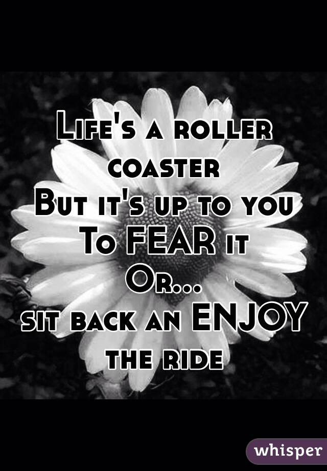 Life's a roller coaster  But it's up to you To FEAR it Or... sit back an ENJOY the ride