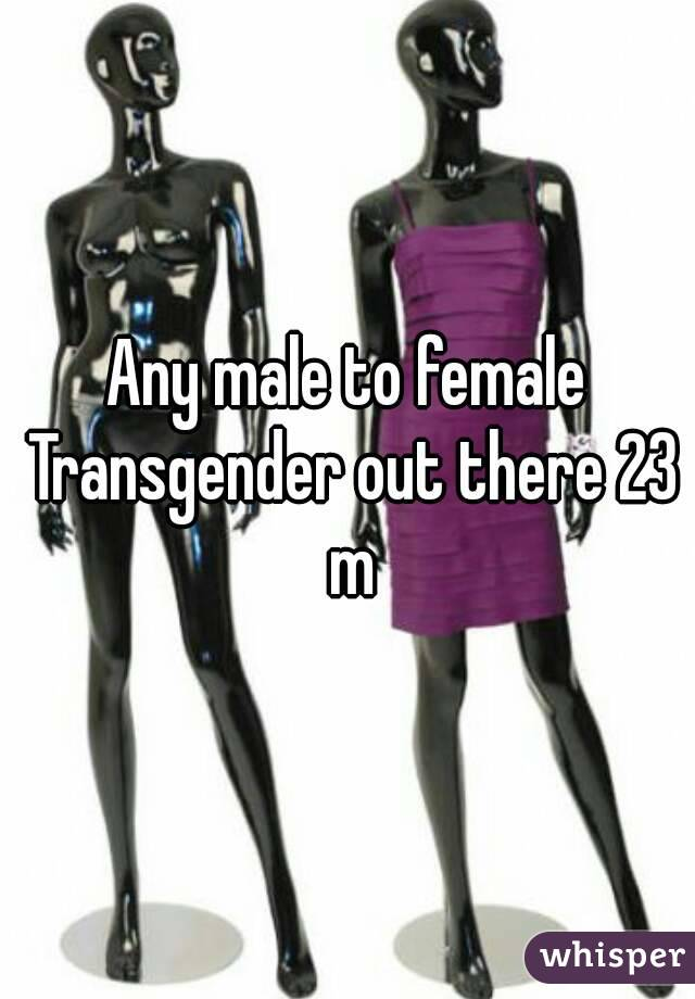Any male to female Transgender out there 23 m