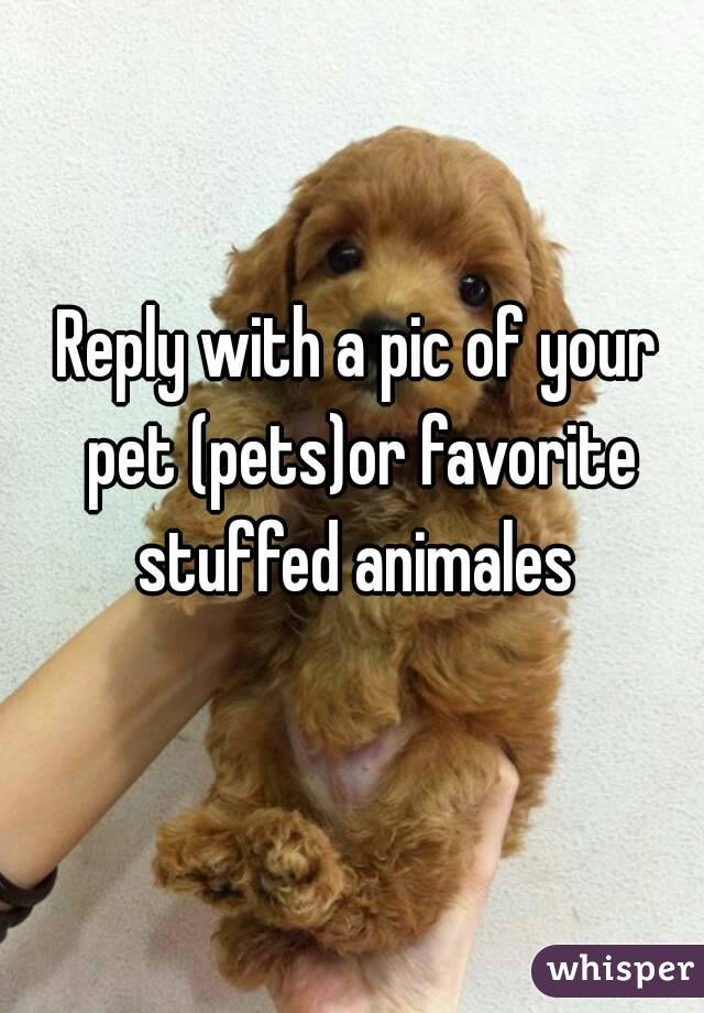 Reply with a pic of your pet (pets)or favorite stuffed animales